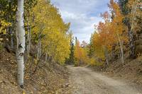 Colorado Rocky Mountain Colorful Autumn Back Road