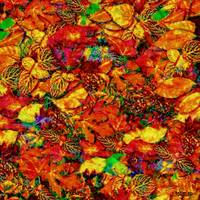 A carpet of falling leaves