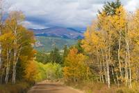 Rocky Mountain Autumn Scenic Drive