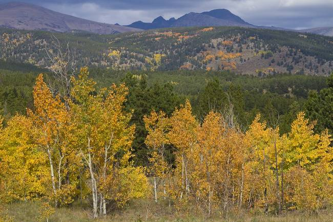 Colorado Rocky Autumn View