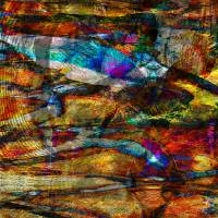 Abstract Fish Pond by Roger Dullinger