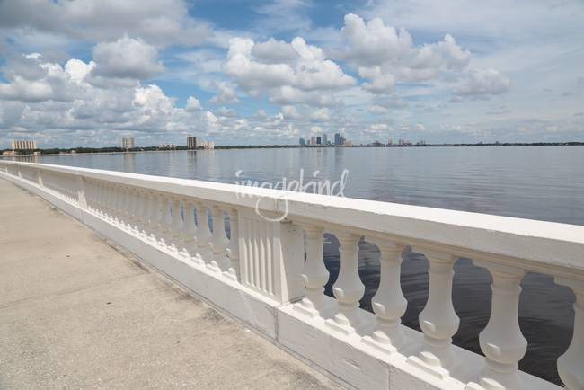 Walk on Bayshore
