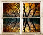 Sunset Tree Silhouette Abstract Picture Window Vie