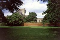 Winchester Cathedral 14 by Priscilla Turner