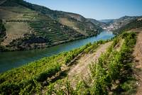 Image ID# Whalen-110625-2365 - Douro River Valley