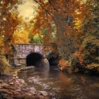 """Autumns Ebb"" by JessicaJenney"