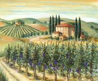 Tuscan Vineyard and Villa