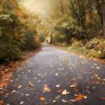 """Nature Walk"" by JessicaJenney"