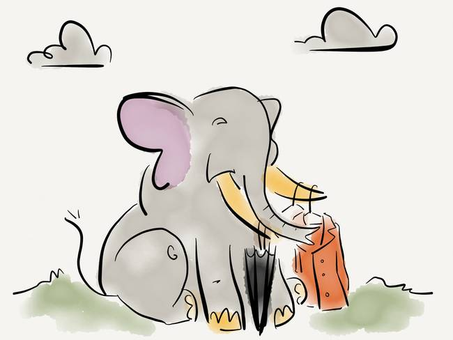 Elephant with a rain coat