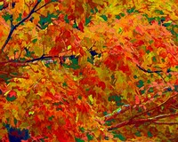 Fall Colors Abstract