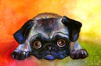 Cute Pug dog portrait painting print