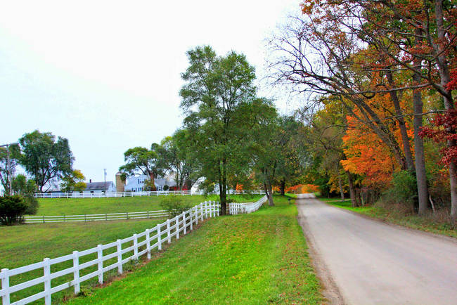 Autumn on the Backroads