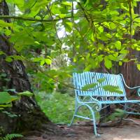Bench Your Blues Away by Barb Tallberg