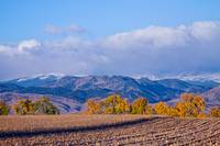 Colorado Autumn Morning Scenic View
