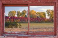 Rural Country Autumn Red Barn Picture Window Frame