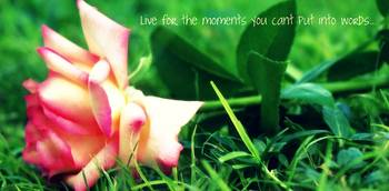 Live for the moment...