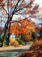Suburban Street in Autumn