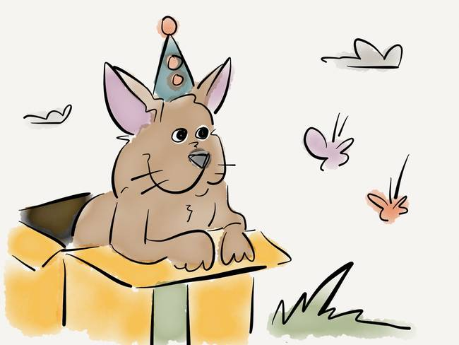 Circus dogs and butterflies