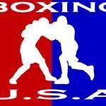 U.S.A. Boxing logo