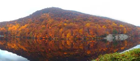 Bear Mountain Foliage