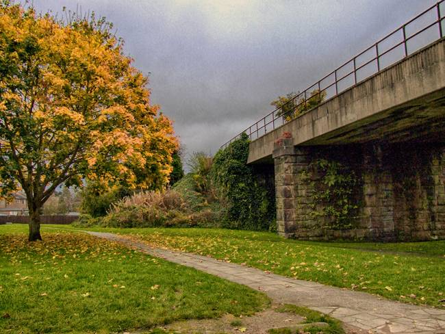 Wirral Way in Autumn