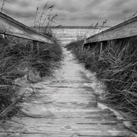Boardwalk to Ocean Art Prints & Posters by Tammy McKinley
