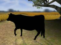 sHADOW cOW