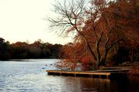 Knapp's Lake - Brookwood Hall Town Park - East Isl