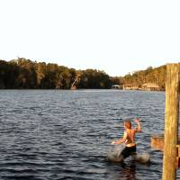 Cody Jumps in Water by Barbara Wilford Gentry