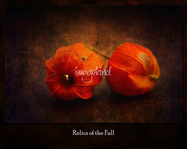 Relics of the Fall