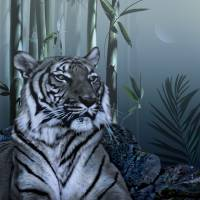 Tiger in Bamboo Forest by I.M. Spadecaller