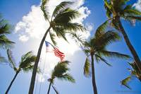 North Shore US Flag Hawaiian Style