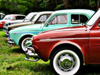 Renault Dauphine in line