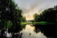 Duck Pond by Joe Gemignani