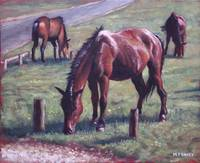 three new forest horses on grass