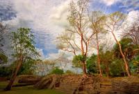 Mayan Ruins-Belize by Joe Gemignani