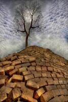Tree on Stone Hill-Belize by Joe Gemignani