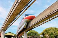 Monorail Monday - Coral
