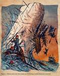 Moby Dick vs Life Aquatic