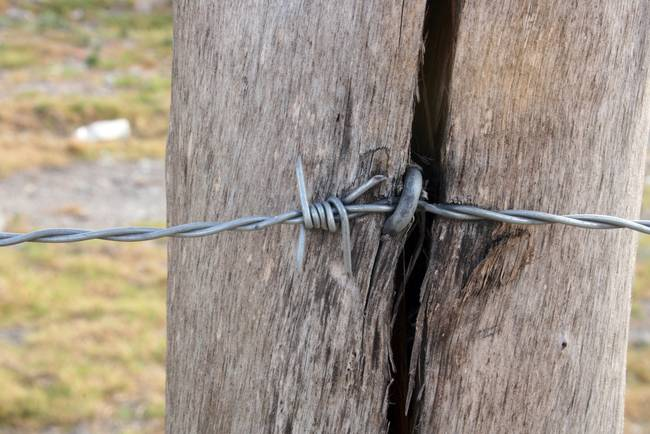 Barbed Wire in a Fence Pole