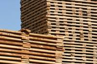 Stacks of Lumber Drying