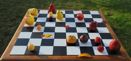 Philidor Defence (Fruit chess)