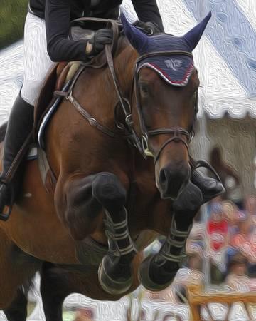 Horse Show Jumper-14