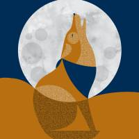 Coyote Art Prints & Posters by Eleanor Grosch
