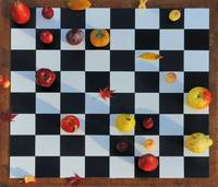 Philidor Defence by fruit chess
