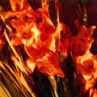 Shelley's Flowers#3 by Joe Gemignani