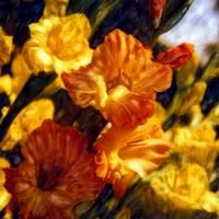 Shelley's Flowers#4 by Joe Gemignani