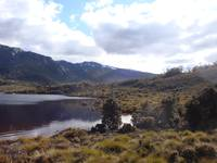 Dove Lake at Cradle Mountain, Tasmania 003