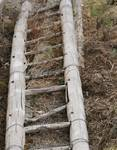 Bamboo Wooden Ladder