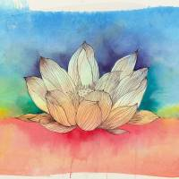 Sunset Lotus Art Prints & Posters by Lauren McMullen